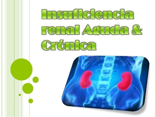 Insuficiencia renal aguda e insuficiencia renal cr nica for Alimentos prohibidos para insuficiencia renal