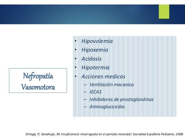 Insuficiencia renal neonatal rlc