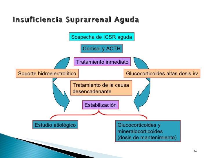 corticosteroides intraarticulares en equinos