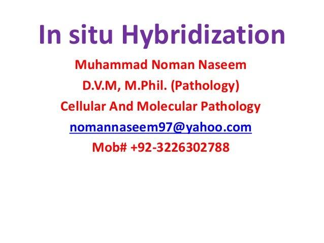 In situ Hybridization  Muhammad Noman Naseem  D.V.M, M.Phil. (Pathology)  Cellular And Molecular Pathology  nomannaseem97@...