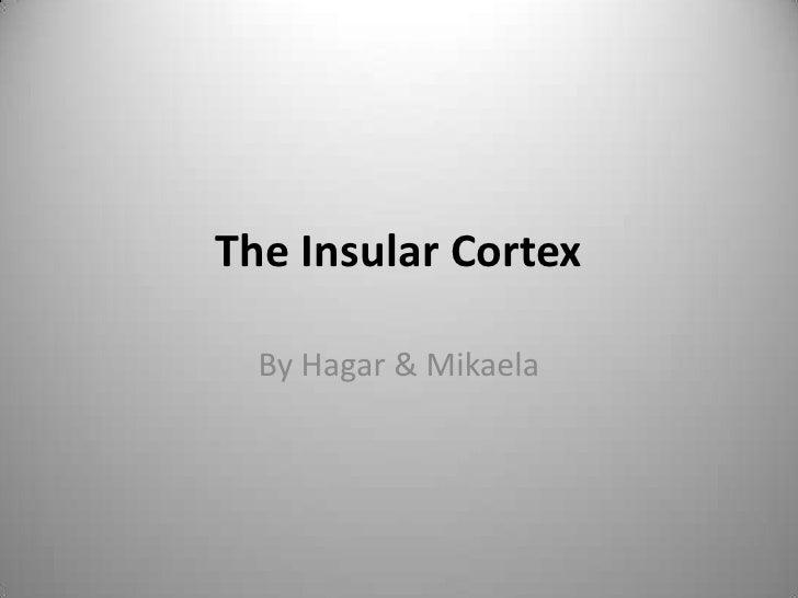 The Insular Cortex<br />By Hagar & Mikaela<br />