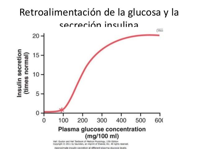 La insulina y sus funciones en el metabolismo