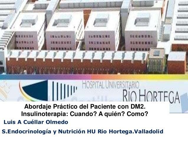 Luis A Cuéllar Olmedo S.Endocrinología y Nutrición HU Rio Hortega.Valladolid Abordaje Práctico del Paciente con DM2. Insul...