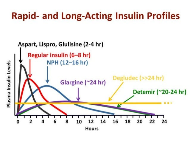 Insulin: what is new