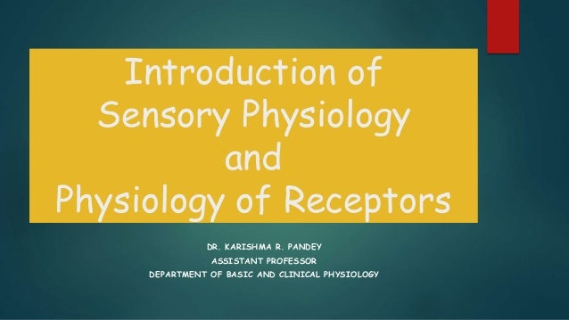 introduction to sensorial Learn about the sensory systems involved in sensory processing (also known as sensory integration).