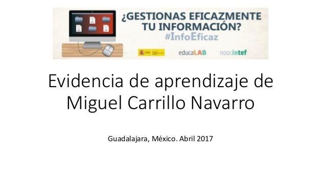 Evidencia de aprendizaje de Miguel Carrillo Navarro Guadalajara, México. Abril 2017