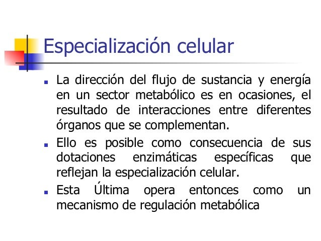 funciones del metabolismo resultados