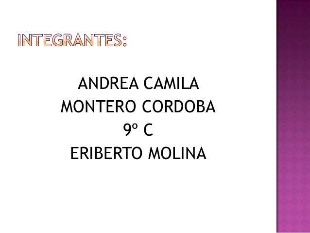ANDREA CAMILAMONTERO CORDOBA       9º C ERIBERTO MOLINA