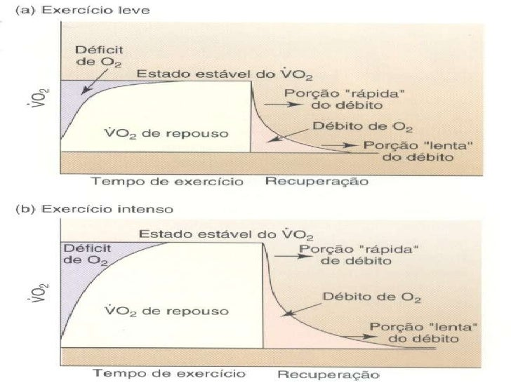 Deficit de Oxigênio <ul><li>período em que o VO 2  está abaixo do necessário para suprir o ATP necessário </li></ul>