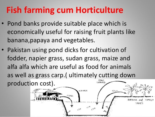 Integrated farming system by Dr sunil