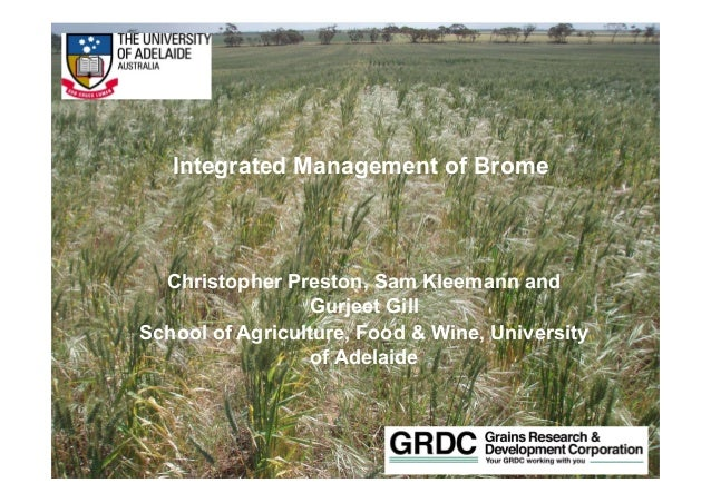 Life Impact The University of Adelaide Integrated Management of Brome Christopher Preston, Sam Kleemann and Gurjeet Gill S...