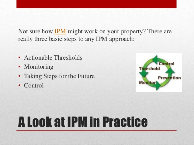 Green pesticides in ipm