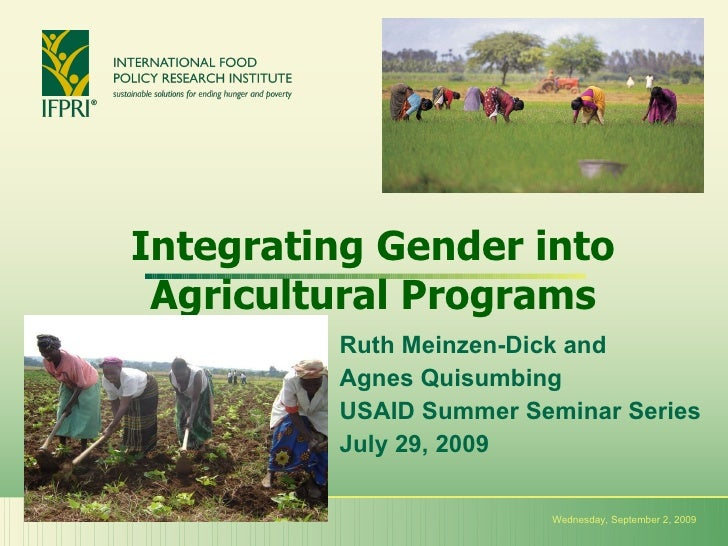 Integrating Gender into Agricultural Programs Ruth Meinzen-Dick and  Agnes Quisumbing USAID Summer Seminar Series July 29,...