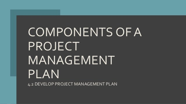 COMPONENTS OF A PROJECT MANAGEMENT PLAN 4.2 DEVELOP PROJECT MANAGEMENT PLAN