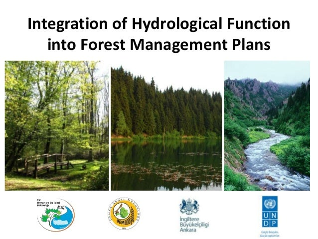 Integration of Hydrological Function into Forest Management Plans