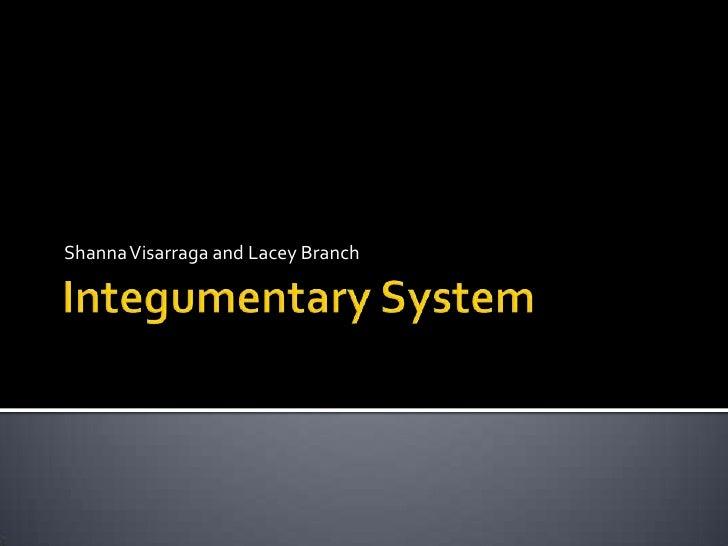 Integumentary System<br />Shanna Visarraga and Lacey Branch<br />