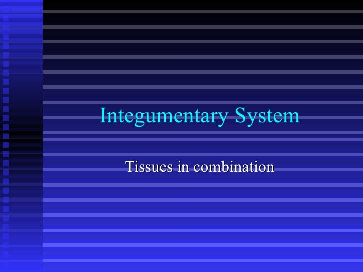 Integumentary System Tissues in combination