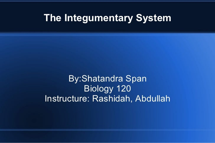 The Integumentary System By:Shatandra Span Biology 120 Instructure: Rashidah, Abdullah