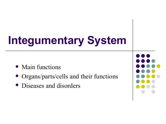 Integumentary System Main functions Organs/parts/cells and their functions Diseases and disorders
