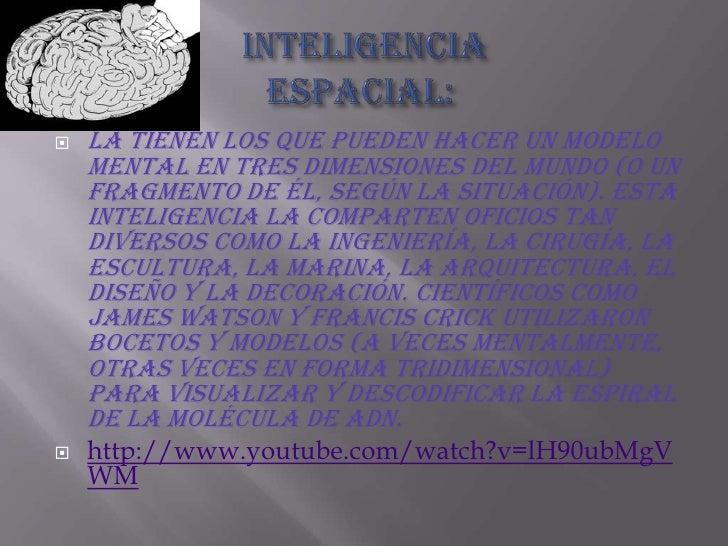 Inteligencia espacial:<br />La tienen los que pueden hacer un modelo mental en tres dimensiones del mundo (o un fragmento...