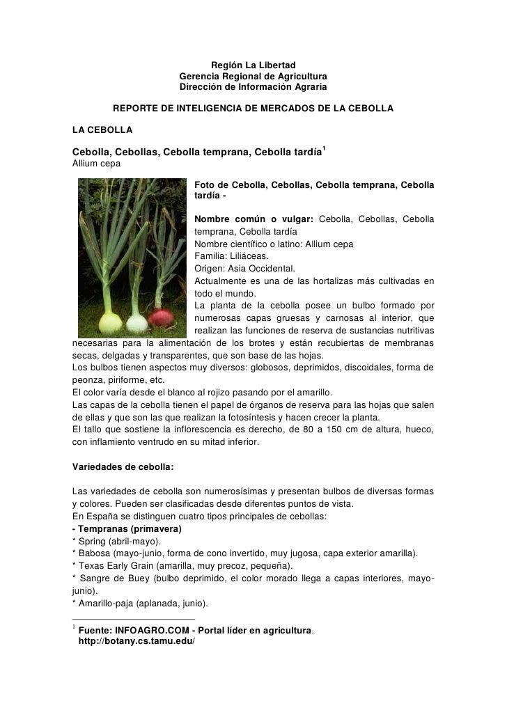 Región La Libertad                          Gerencia Regional de Agricultura                          Dirección de Informa...