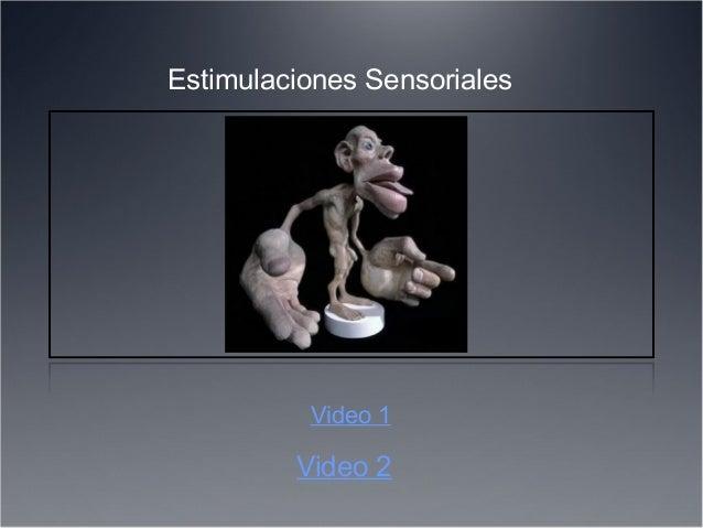 Video 2 Video 1 Estimulaciones Sensoriales