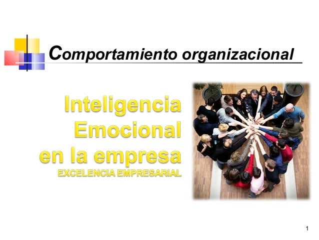 1Comportamiento organizacional