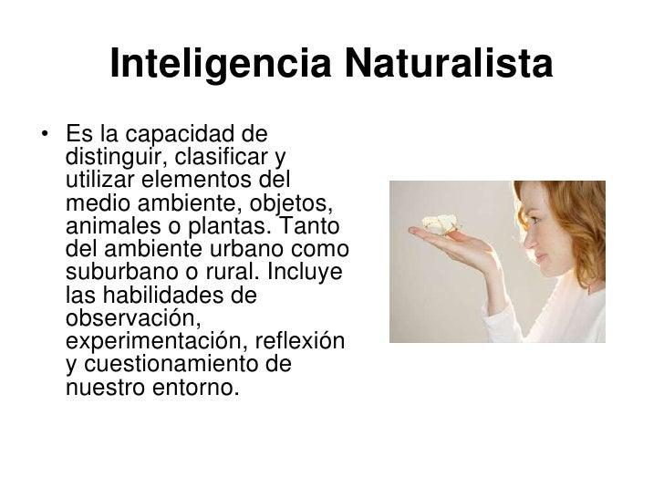 Inteligencia Naturalista• Es la capacidad de  distinguir, clasificar y  utilizar elementos del  medio ambiente, objetos,  ...