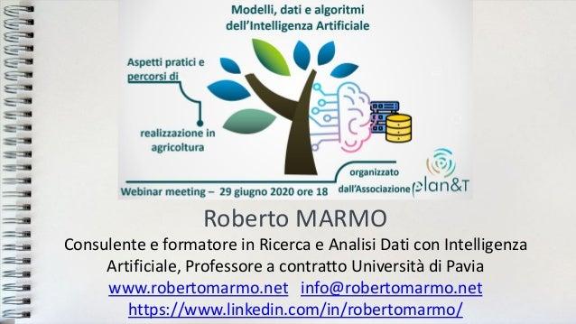 Roberto MARMO Consulente e formatore in Ricerca e Analisi Dati con Intelligenza Artificiale, Professore a contratto Univer...