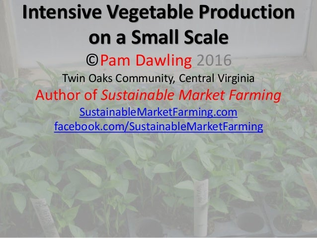 Intensive Vegetable Production on a Small Scale ©Pam Dawling 2016 Twin Oaks Community, Central Virginia Author of Sustaina...