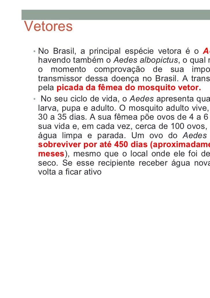Vetores • No Brasil, a principal espécie vetora é o Aedes aegypti,   havendo também o Aedes albopictus, o qual não se tem ...