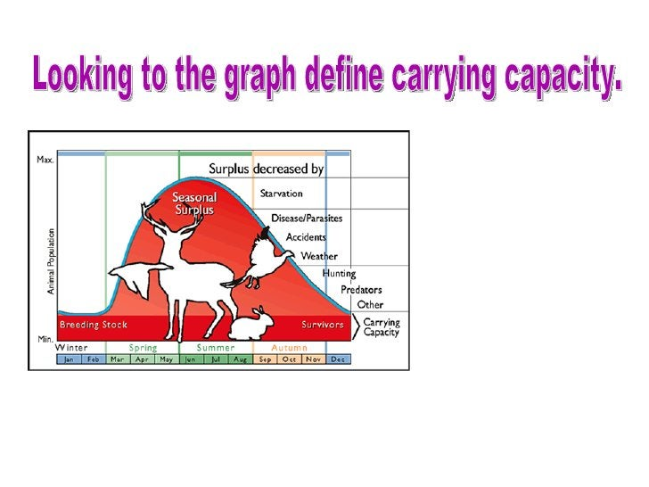 Looking to the graph define carrying capacity.