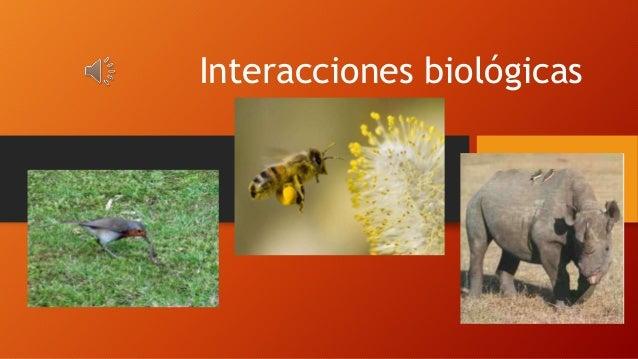 Interacciones biológicas