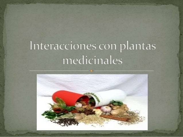 Los múltiples preparados que contienen plantas medicinales son capaces de producir interacciones con los medicamentos. La ...