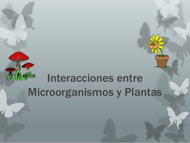Interacciones entreMicroorganismos y Plantas