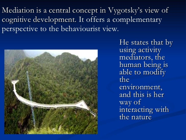 vygotsky s concepts of cognitive development Theories and concepts have  as proposed and theorized by lev vygotsky what is cognitive development  we will write a custom essay sample on lev vygotsky's.