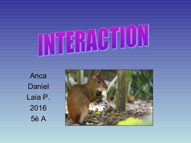 Anca Daniel Laia P. 2016 5è A