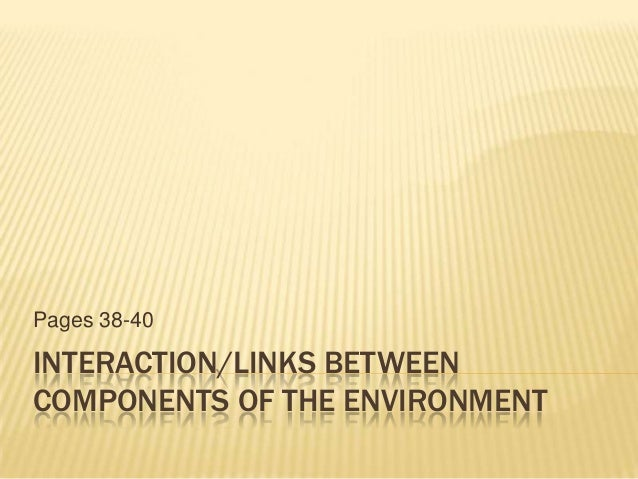 INTERACTION/LINKS BETWEEN COMPONENTS OF THE ENVIRONMENT Pages 38-40