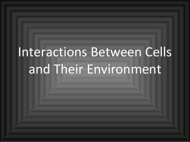 Interactions Between Cells  and Their Environment