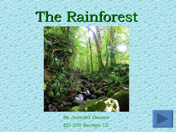 The Rainforest <ul><li>By Jennifer Dooms </li></ul><ul><li>ED 205 Section 15 </li></ul>