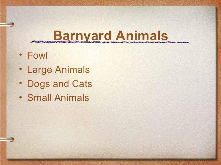 Barnyard Animals <ul><li>Fowl </li></ul><ul><li>Large Animals </li></ul><ul><li>Dogs and Cats </li></ul><ul><li>Small Anim...