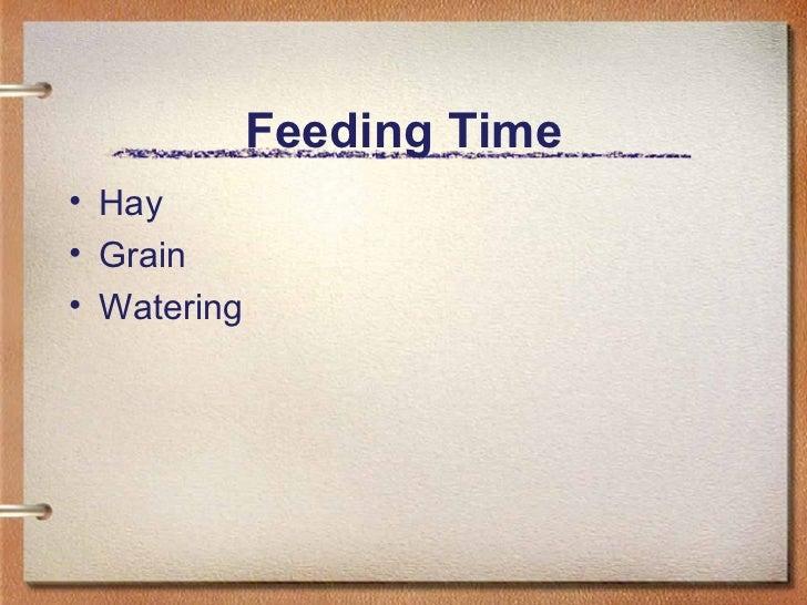 Feeding Time <ul><li>Hay </li></ul><ul><li>Grain </li></ul><ul><li>Watering </li></ul>