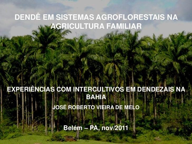 DENDÊ EM SISTEMAS AGROFLORESTAIS NA        AGRICULTURA FAMILIAREXPERIÊNCIAS COM INTERCULTIVOS EM DENDEZAIS NA             ...