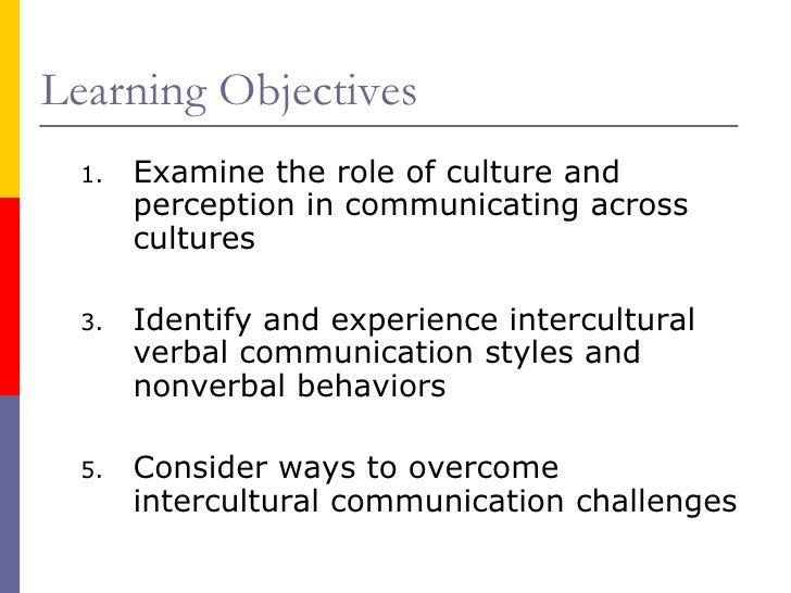 Intercultural communication.sal july 2010 Slide 3