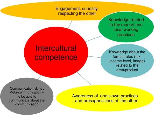 Intercultural competence and maturity model seminar 26 aug 2014