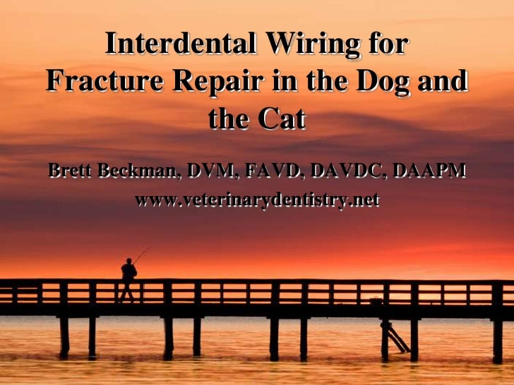 Interdental Wiring for Fracture Repair in the Dog and the Cat<br />Brett Beckman, DVM, FAVD, DAVDC, DAAPM<br />www.veterin...