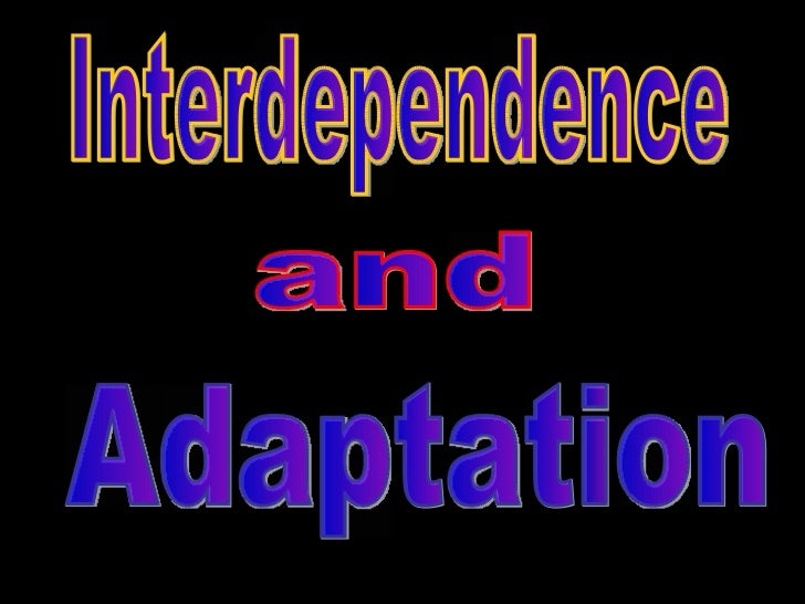 Interdependence and Adaptation
