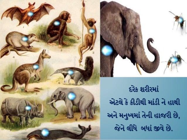 Interesting : Nirvana / Moksh - a principle based method. (Gujarati) Slide 2