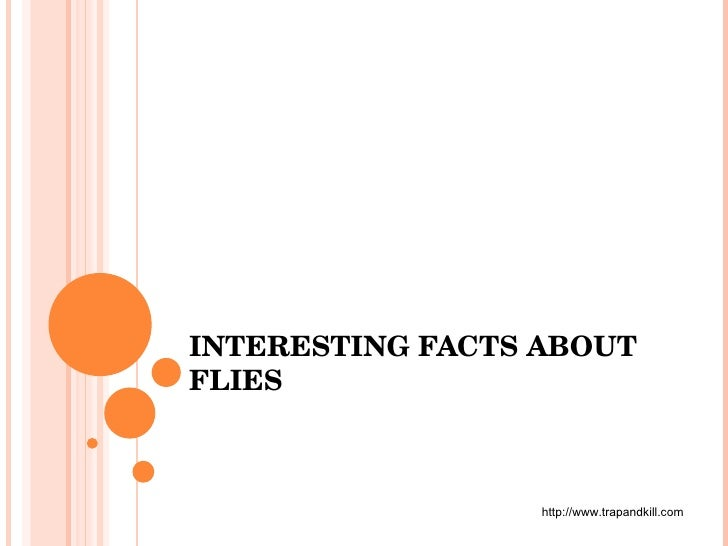 INTERESTING FACTS ABOUT FLIES http://www.trapandkill.com