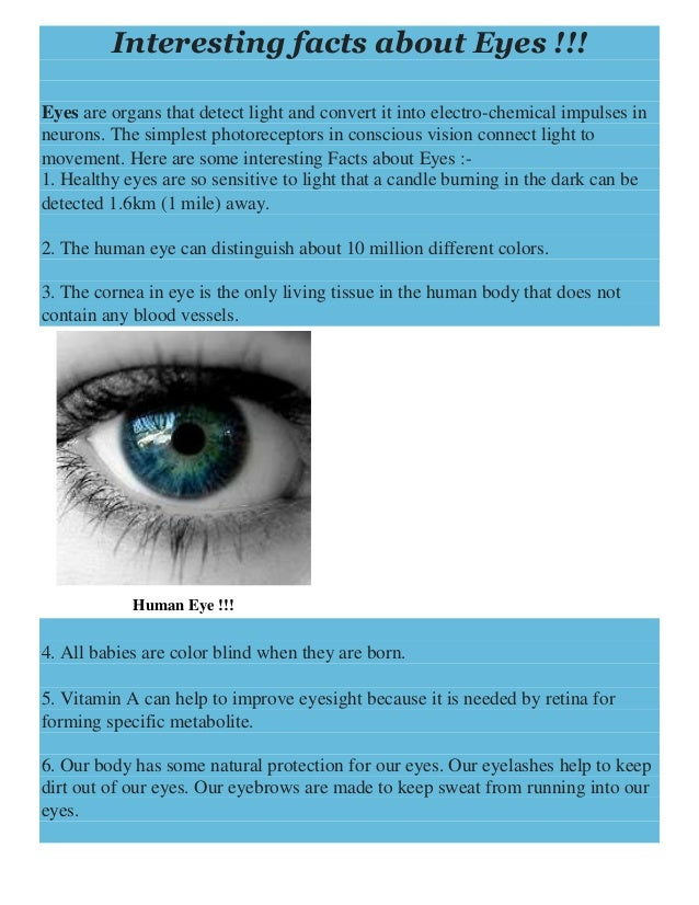 Top 28 Facts About Blue Interesting Facts About Eyes